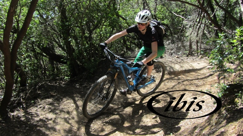 ibis_biketrader